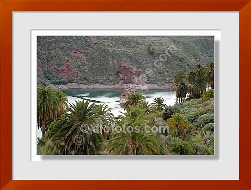 fotos de paisajes canarios