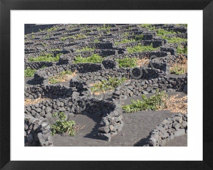 paisajes naturales Canarias