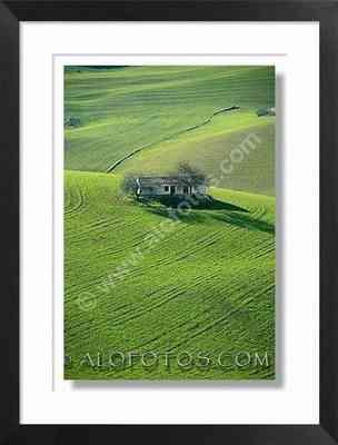 cortijo andaluz,  paisaje, Cádiz - campos de cultivo