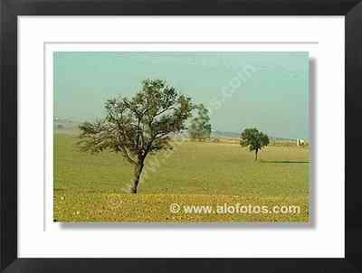 paisajes, España