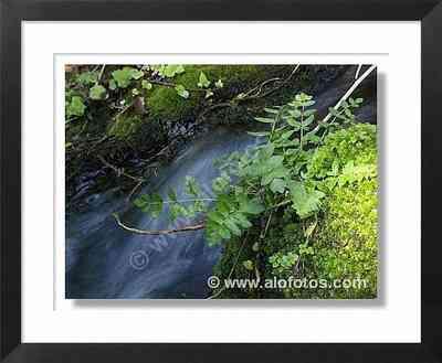 naturaleza, agua corriente
