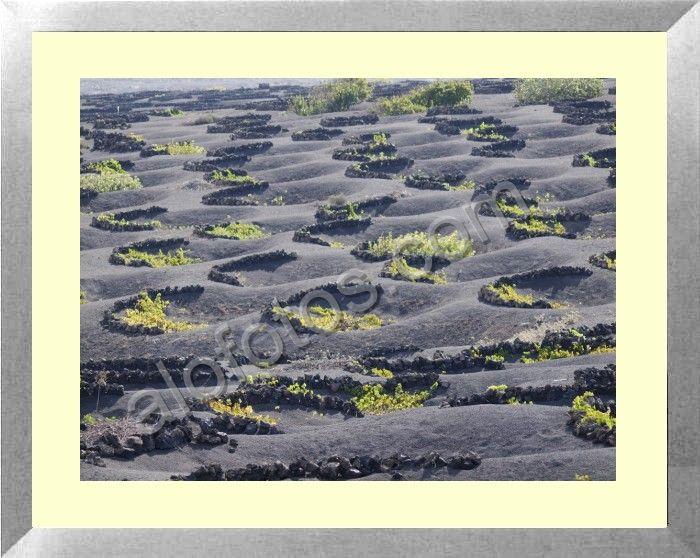 Canary islands landscape